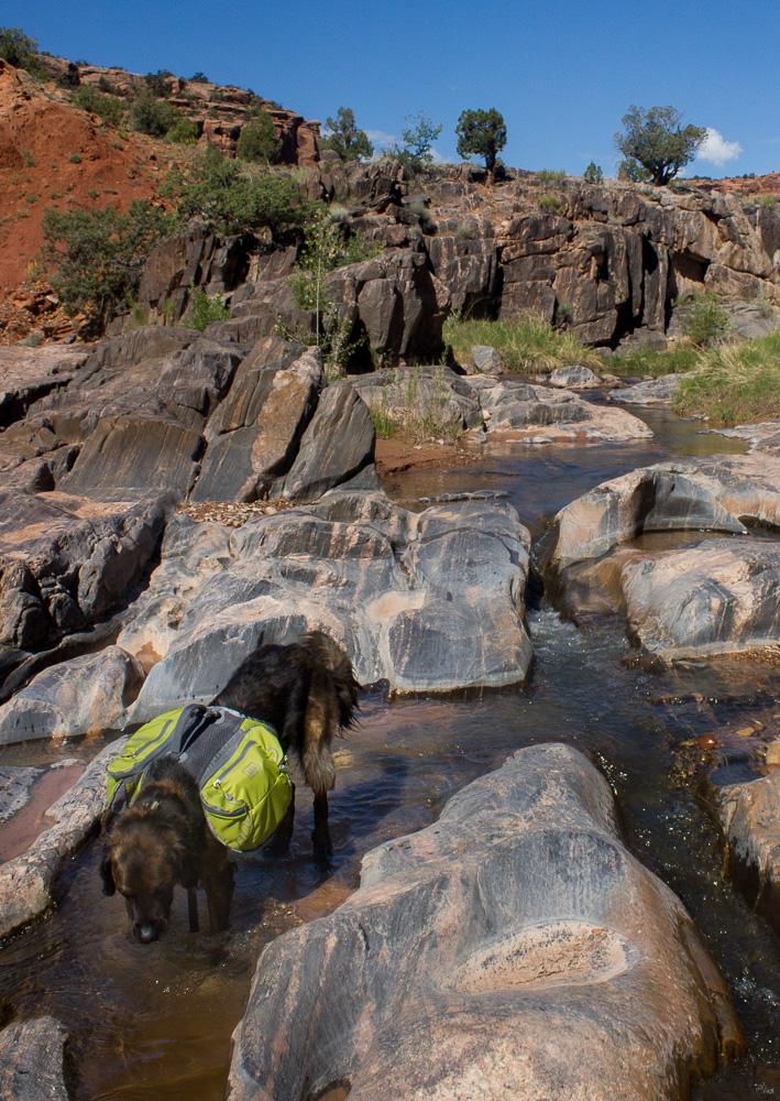 Colorado, Desert, Backpacking