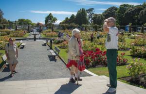 Rose Garden, Wellington