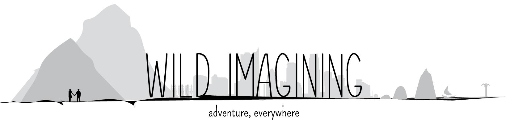 Wild Imagining