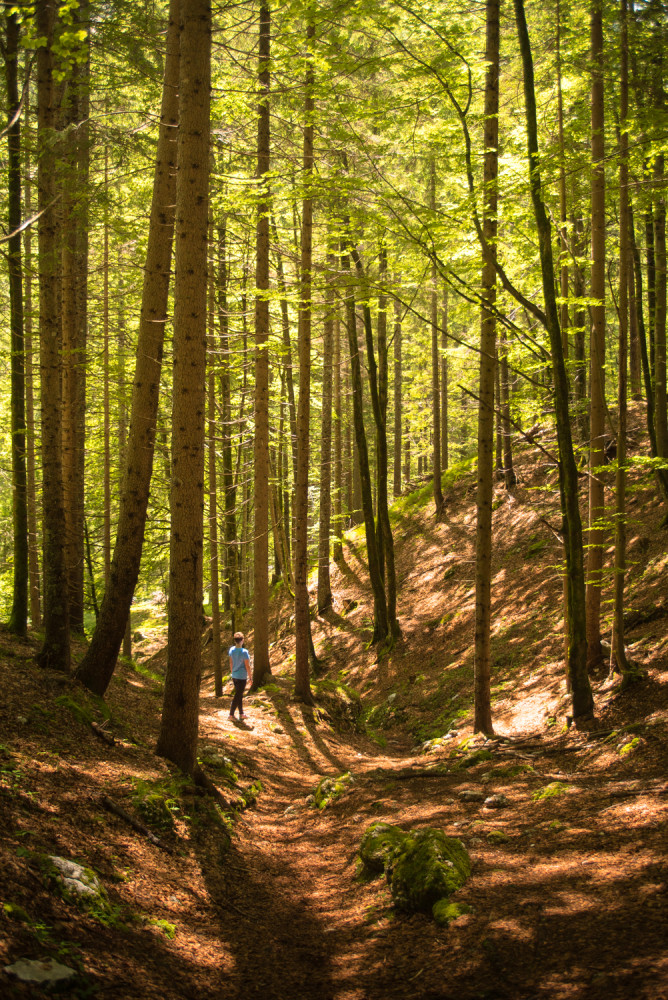 Slovenia, Travel, Europe, Hiking