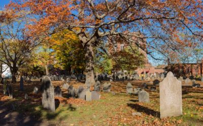 Salem, Massachusetts for a day: Hidden gems and tasty tipples